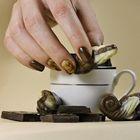 Proszek do manicure tytanowego - Kabos Magic Dip System 44 My Brownie (3)